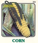 Annies Attic Vegetable Potholders: Corn