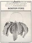 Annie's Attic Hanging Gardens: Boston Fern (bw)