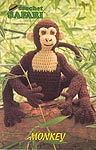 Annie's Attic Crochet Safari: Monkey