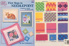 ASN First Steps in Needlepoint: A Beginner's Guide to Canvas Work